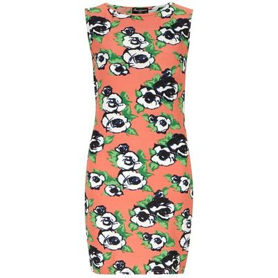 Dorothy Perkins Indulgence Pink Floral Fitted Dress