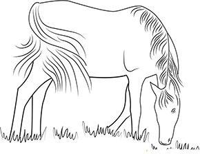 ausmalbild pferd auf der weide zum kostenlosen ausdrucken