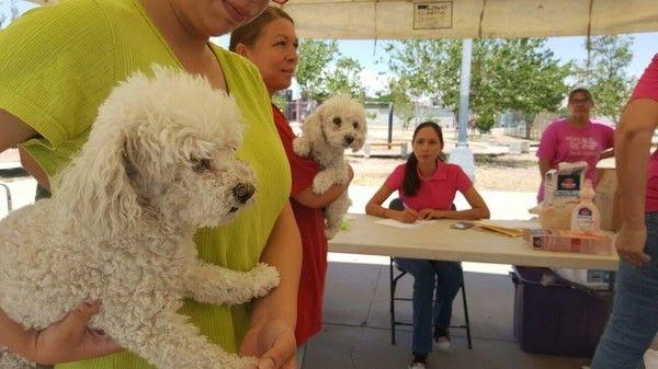 <p>Chihuahua, Chih.- El Gobierno Municipal en conjunto con la Secretaria de Salud de Gobierno del Estado, a través de la Región Sanitaria