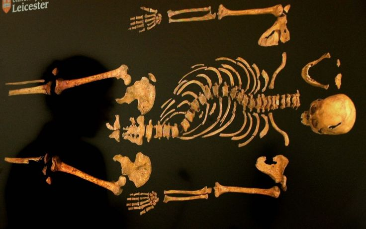 Digging Up Bones: The Discovery of King Richard III