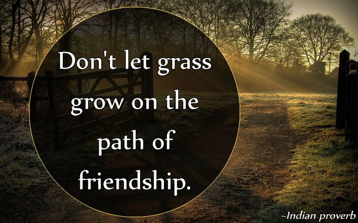 Don't let grass grow on the path of friendship. Indian proverb