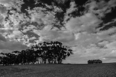 """Saatchi Art Artist johann kruger; Photography, """"Desolate"""" #art"""