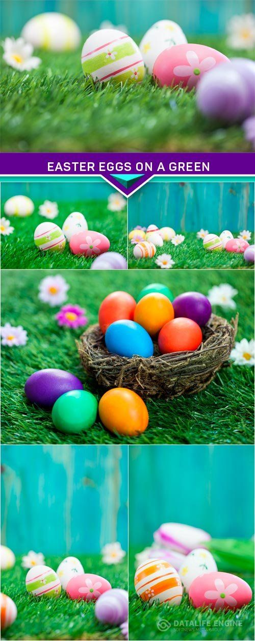 Easter eggs on a green 6x JPEG