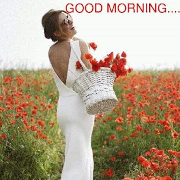Good morning my dear friend!