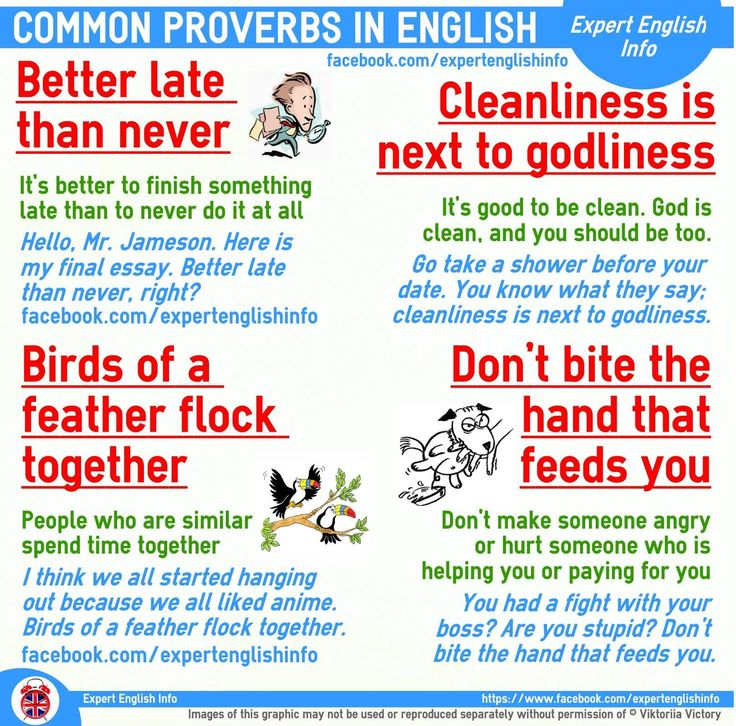 50 most important proverbs in english A good command of english is not only about speaking correctly it is also about  using idioms the right way we show you the most important.