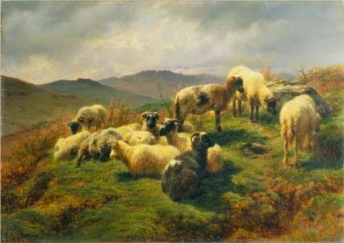 Rosa Bonheur, Sheep in the Highlands (1857)
