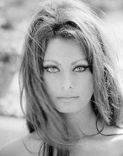 profondementnoiretblanc:  Sofia Loren