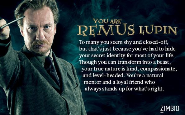 I got Remus. I love his character and why JK Rowling wrote him so to be him is an honour(even if it is a silly little quiz)