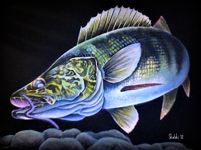 17 Best Images About Fish Paintings On Pinterest Fish