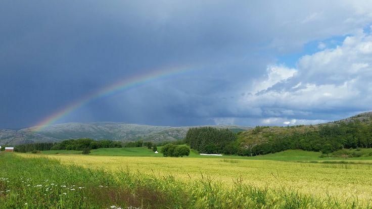 Rainbow, Norway, Brønnøysund