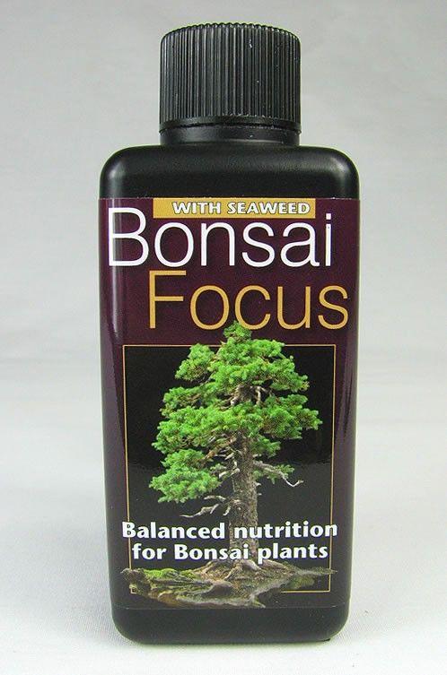 Bonsai Focus Balanced Bonsai Fertilizer @KaizenBonsai