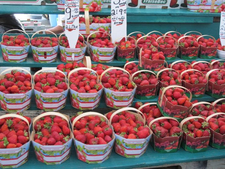 fresh strawberries at the byward market, Ottawa