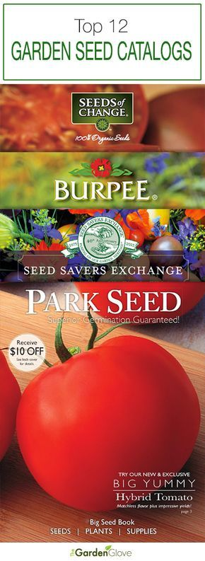 Top 12 Garden Seed Catalogs • Check our top 12 list of garden seed catalogs for 2017. Great seed catalogs like Burpee, Seed Savers, Park Seed, Johnny's and more!