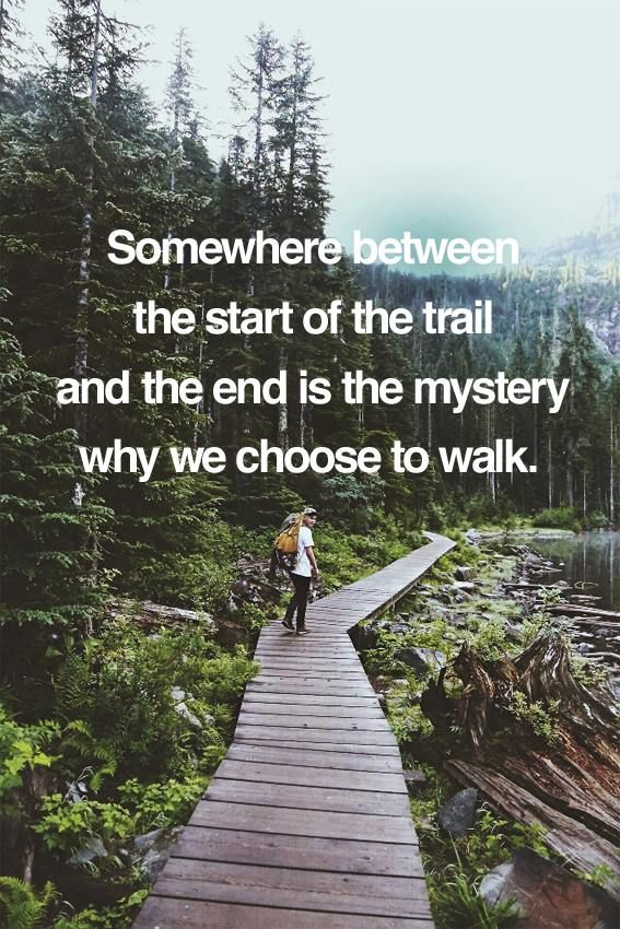 To find the mystery, you must walk the trail. #outdoorinspiration #inspiration #quotes
