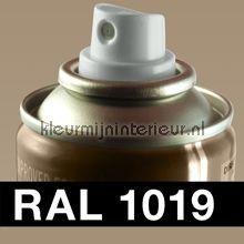 RAL 1019 Grijs-Beige verf Motip