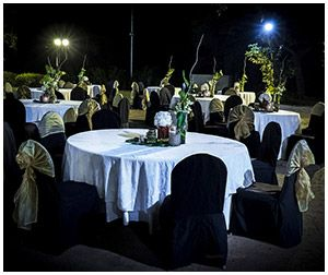 163 best theme wedding decorations images on pinterest marriage 163 best theme wedding decorations images on pinterest marriage decoration flower decorations and flower decoration junglespirit Images