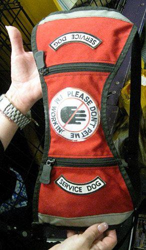 Service Dog Vest - Westminster Show 2010