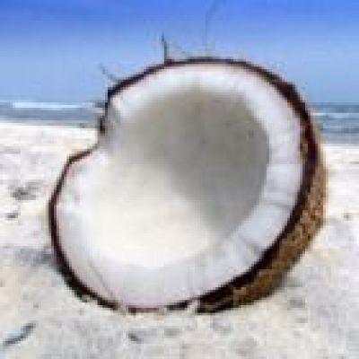 Kokosolie voordelen, nadelen en mogelijke bijwerkingen kokosvet.