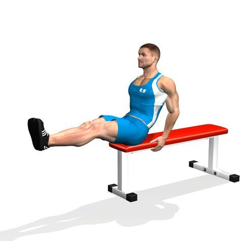 SEATED FLAT BENCH LEG PULL IN INVOLVED MUSCLES DURING THE TRAINING ABDOMINALS