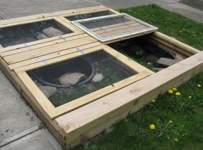 ... Habitat, Create Pets, Turtle Habitat, Turtle Tanks, Turtles Tanks