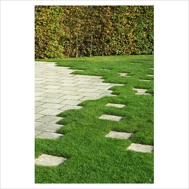 Paving design set in lawn with deciduous hedge in background - Marks Hall, Essex