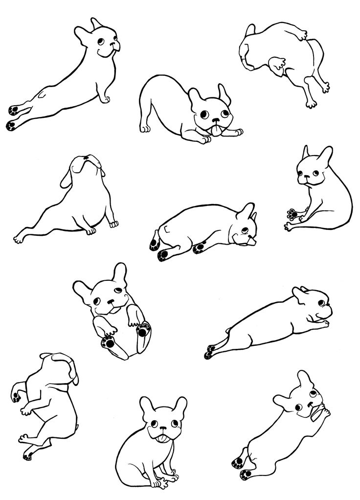 french bulldog frenchie bulldogs frenchies Illustrations for konic.pl