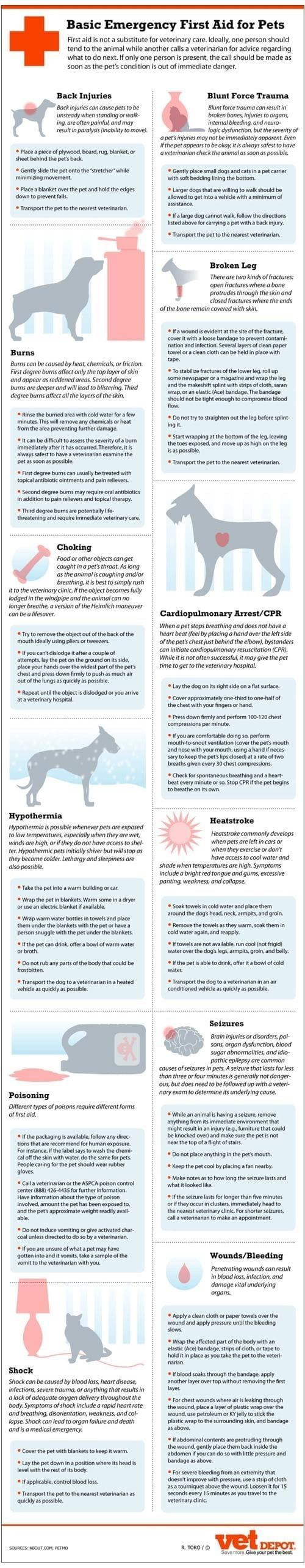 Basic First Aid Emergency For Pets - How to help your pet heal in the event of Shock, Burns, Poison, Blunt Force Trauma, Wounds, Heat Stroke, Seizures and more.