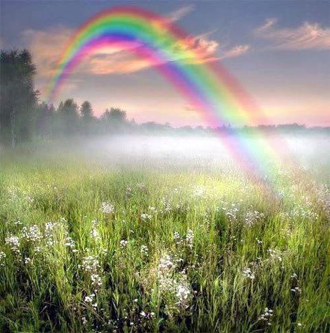 Rainbows いやコラですけど…まあ綺麗かなと…( ´ω` )