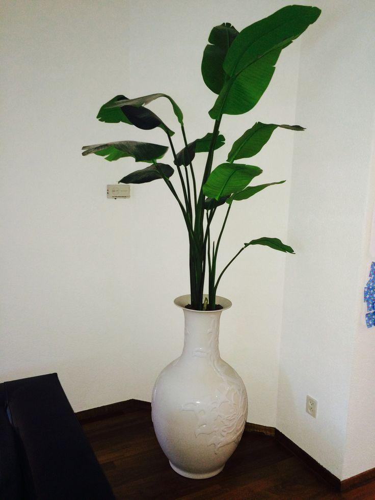 vaas polls potten met plant (nep)