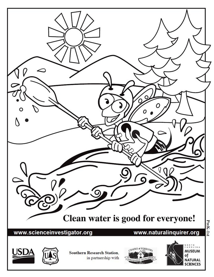 9 best Bees for PreK Students images on Pinterest Bees, Science - best of bee coloring pages preschool