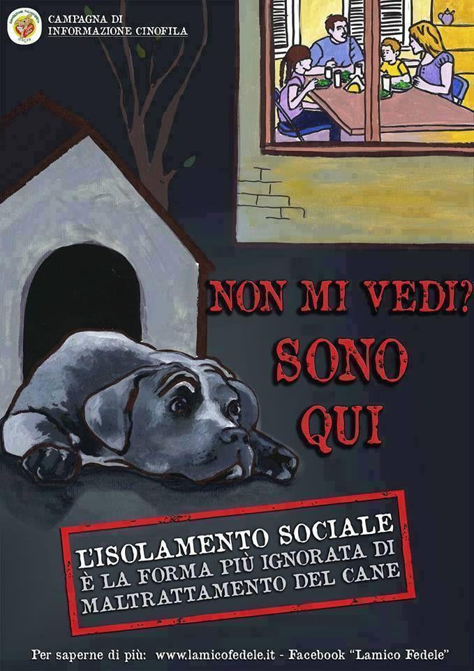 Il cane è un animale sociale e, in quanto tale, sente il bisogno di stare in gruppo. Isolarlo è una forma di maltrattamento
