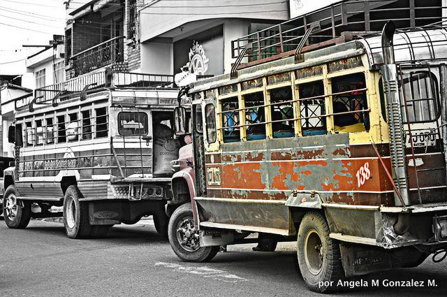 Las Chivas Colombianas en día de mercado | Flickr - Photo Sharing!