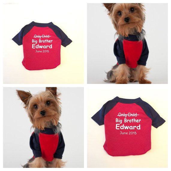 Personalized Dog Shirt Big Brother. Dog Clothes. by PinkRomashka