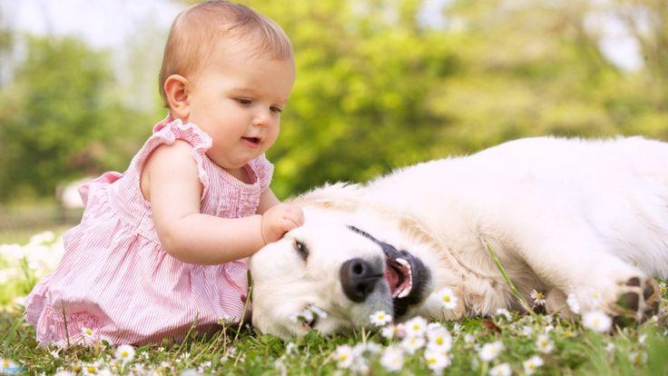 Il cane e i grandi benefici sullo sviluppo del bambino