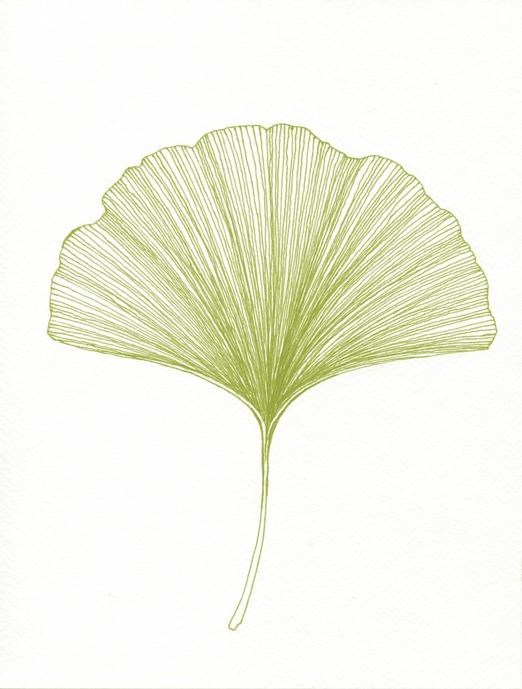 43 best Collage Gingko images on Pinterest | Leaves, Water colors ...
