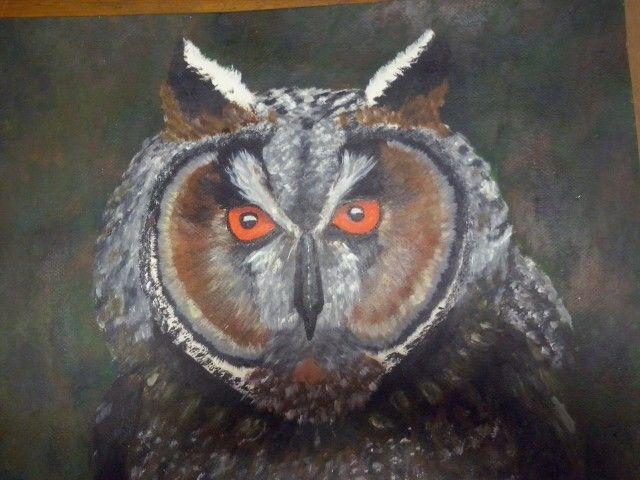 Ohhh my owl