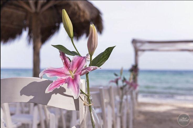 CBD225 wedding Riviera Maya aisle decoration with bottles and stargaze deco/ decoración de camino al altar con botellas y flores Acapulco