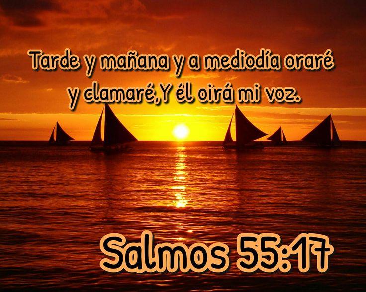 Tarde y mañana y a mediodía oraré y clamaré, y el oirá mi voz. Sal 55.17