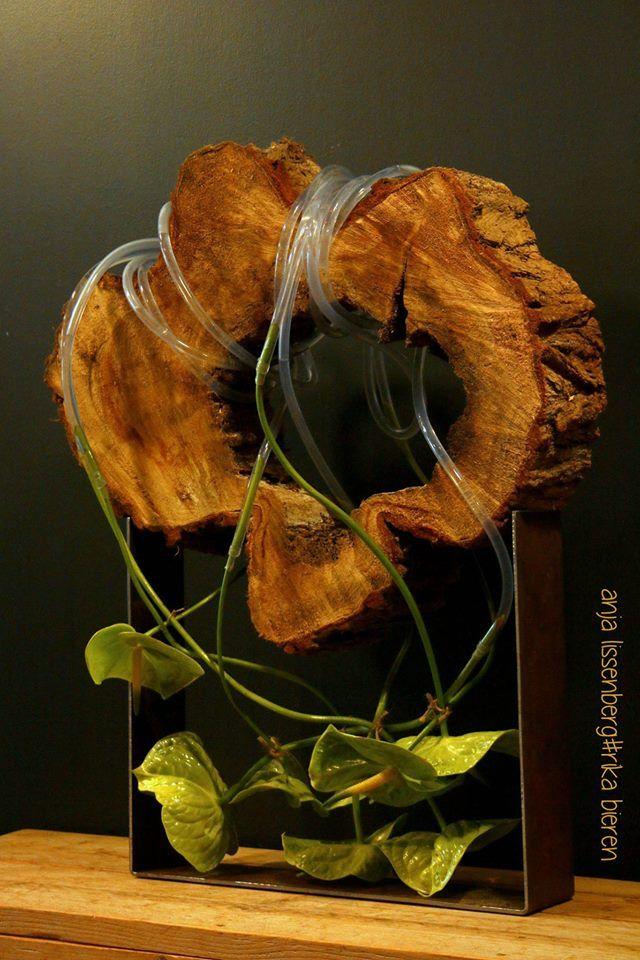 project Kunst-Expo-Dordt 9 april 2017 eerst fotosessie geïnspireerd op de kromme steel. Anthurium midori bevestigd met noodreparatietape aan de slang