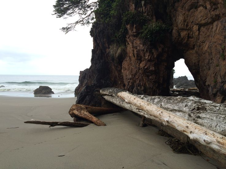 Cape Scott Provincial Park   https://vancouverislandliving.wordpress.com/2015/01/11/trekking-to-cape-scott/