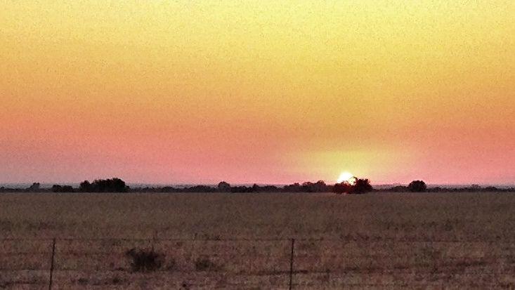 Sonop, Bloemfontein
