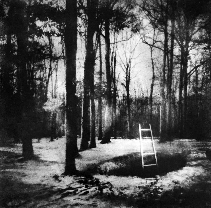 """Saatchi Art Artist: Rebecca Sexton Larson; Black & White 2015 Photography """"""""Curiouser and Curiouser!"""""""""""