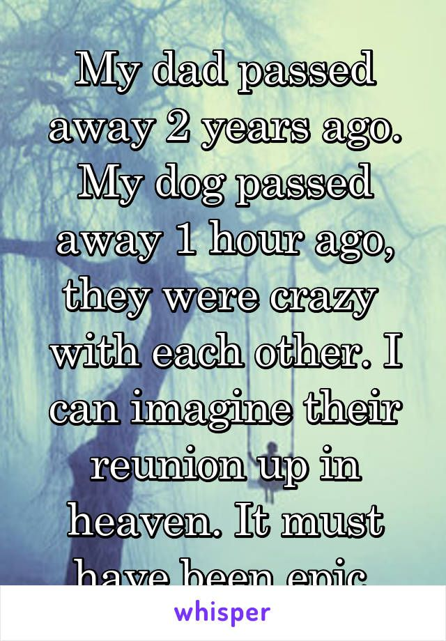 My Dad Passed Away 2 Years Ago. My Dog Passed Away 1 Hour