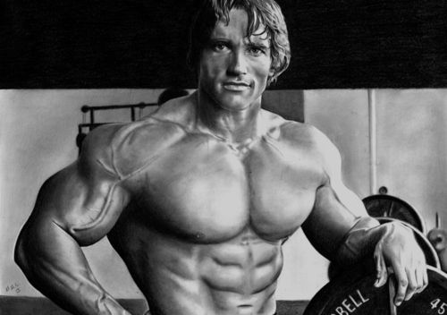 Muscle and Strength Palace: Exercises for Big Biceps