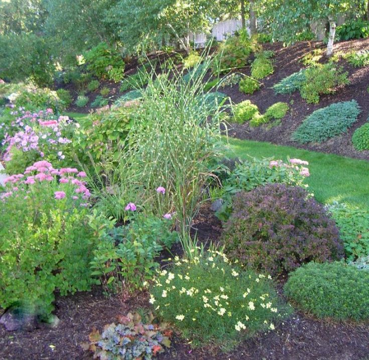 279 best zahrada images on pinterest landscaping ideas for Spring hill nursery garden designs