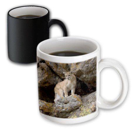 3dRose Puma, Yellowstone NP, Montana - US27 JMC0006 - Joe and Mary Ann McDonald, Magic Transforming Mug, 11oz