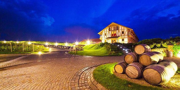 Głęboczek Vine Resort http://www.gleboczek.pl/#!/strona-glowna/