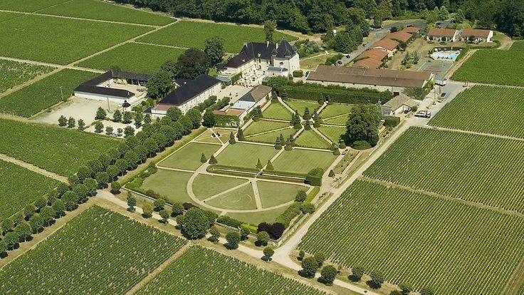 Site dans les vignes