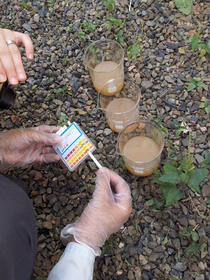 What is the ph of your soil find out with globe soil for Where to find soil