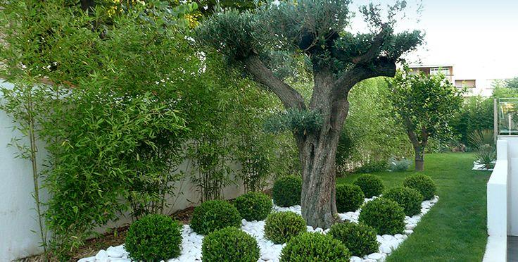 1000 id es sur le th me cr ation de jardin contemporain for Architecte paysagiste contemporain